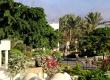 Reef Oasis Beach Resort-Туристическое агентство Мармарис Тревел( 2133527902 )