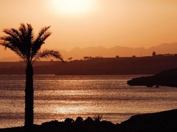 Sharm Plaza-Туристическое агентство Мармарис Тревел( 1924148965 )